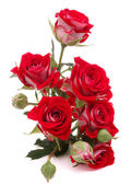 红玫瑰鲜花花束 — 图库照片