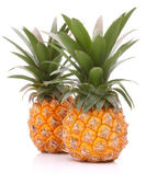 Pineapple tropical fruit or ananas — Stock Photo