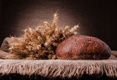 Limpa bröd och råg öron stilleben — Stockfoto