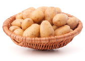 Potato tuber  in wicker basket — 图库照片