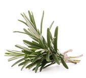 Rosemary herb spice leaves isolated on white background cutout  — Stock Photo