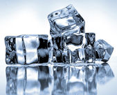 Ice cubes on blue background   — 图库照片