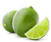 Citrus lime fruit isolated on white background cutout  — Stock Photo