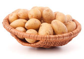Potato tuber  in wicker basket — Stock Photo