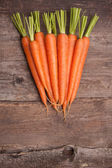 Fresh carrot bunch — Stock Photo