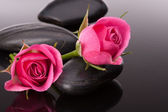 Spa stones and roses — Stock Photo