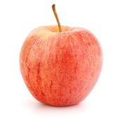 Rött äpple — Stockfoto