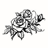 Roses. Black outline drawing on white background — Stock Vector