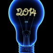 X-Ray lightbulb with sparkling 2014 digits inside — Stock Photo #33145497