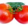 Tomato and cucumber — Stock Photo #2240454