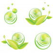 Green Designs - Stock Vector