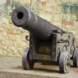 Cannon - Stock Photo