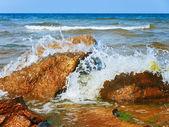 Orilla del mar — Foto de Stock