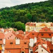 Roofs Of Prague — Stock Photo #16165117
