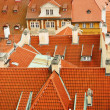Roofs Of Prague - Foto Stock