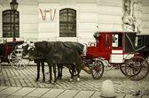 Parking Of Fiacres — Stock Photo