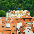Roofs of Prague - 图库照片