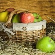 Apples — Stock Photo #22496229