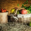 Apples — Stock Photo #22496233