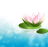 Water Lily — Stock Vector