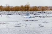 Ice Drifting — Stock Photo
