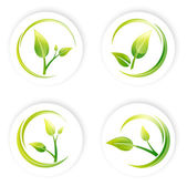 Green Sprout Leaf Design Set — Stock Vector