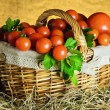 Royalty-Free Stock Photo: Tomatoes