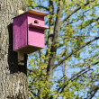 Bird House — Stock Photo #27767605