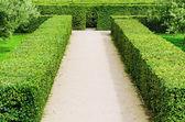 Troja Labyrinth — Stock Photo