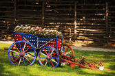 Cart With Flowers — Stock Photo