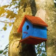 Bird house — Stockfoto