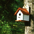 Bird House — Stock fotografie #38171891