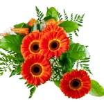Bouquet of gerberas — Stock Photo #5532100