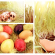 Easter — Stock Photo #8991369