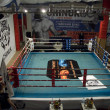 Stok fotoğraf: Thai boxing fight club Osminog