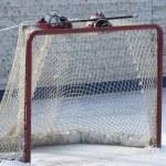 Hockey gate — Stock Photo #21296881