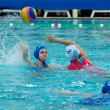 Waterpolo. Women - Stock Photo
