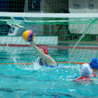 Waterpolo. Women. Safe of the gate — Stock Photo