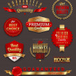 Set of premium & quality golden labels — Vector de stock