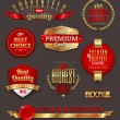 Stock Vector: Set of premium & quality golden labels