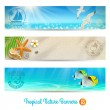 Travel and vacation vector banners with tropical natures — Stock Vector