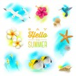 Vector set of summer vacation and tropical nature elements — Stock Vector #48026033
