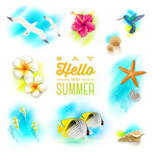 Vector set of summer vacation and tropical nature elements — Stock Vector