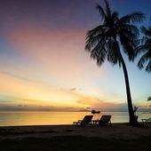 Beautiful sunrise at Beach with palms — Stock Photo