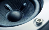 Subwoofer element close-up — Stock Photo