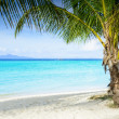 Beautiful beach — Stockfoto