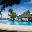 Pool with artificial beach and tropical ocean — Stock fotografie