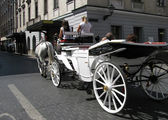 Carriage with tourists — 图库照片