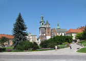 Panorama of Wawel Cathedral in Krakow (Poland) — Stock Photo