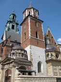 Wawel Cathedral in Krakow (Poland) — Stockfoto
